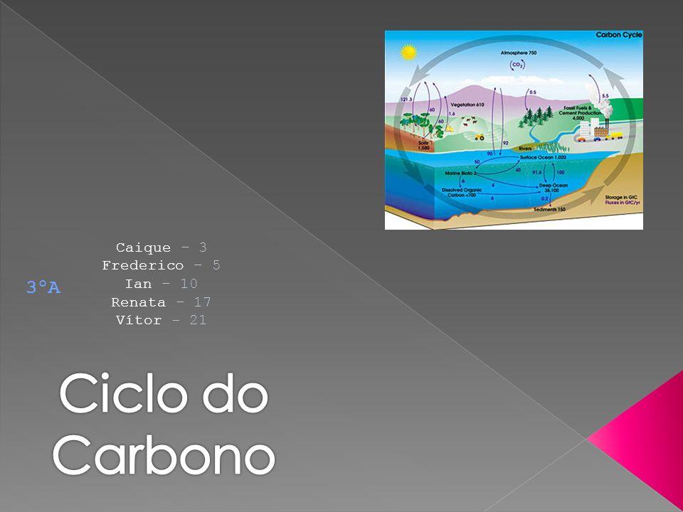 Caique – 3 Frederico – 5 Ian – 10 Renata – 17 Vítor - 21 3ºA