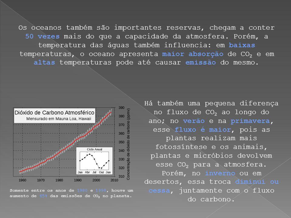 Há também uma pequena diferença no fluxo de CO 2 ao longo do ano; no verão e na primavera, esse fluxo é maior, pois as plantas realizam mais fotossínt