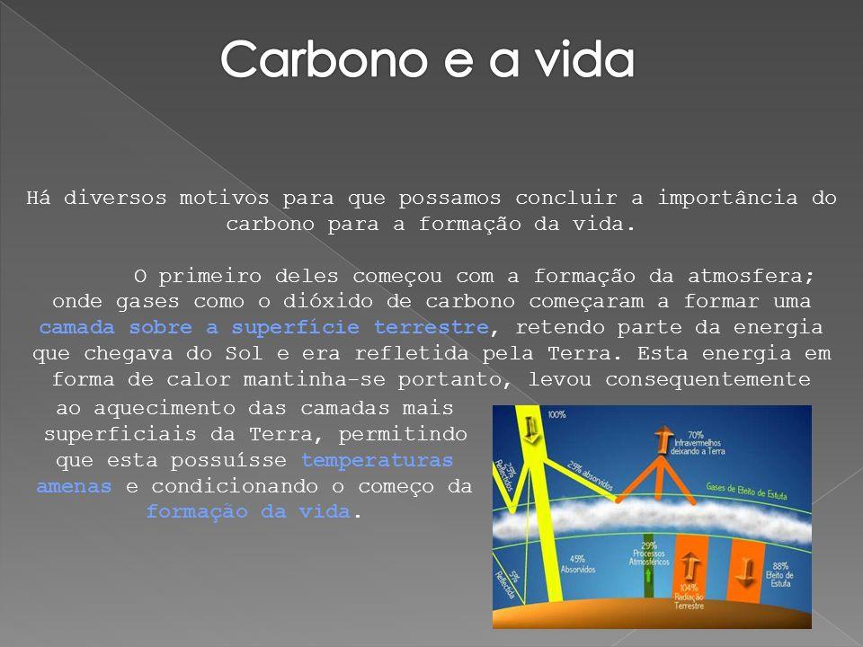 Há diversos motivos para que possamos concluir a importância do carbono para a formação da vida. O primeiro deles começou com a formação da atmosfera;
