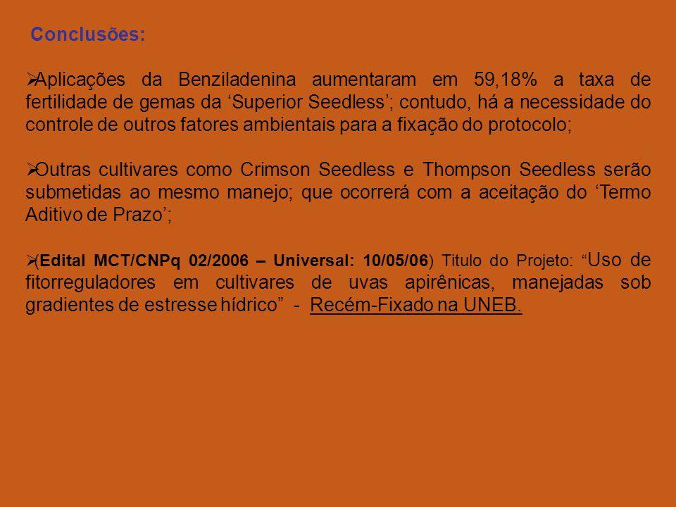 Conclusões: Aplicações da Benziladenina aumentaram em 59,18% a taxa de fertilidade de gemas da Superior Seedless; contudo, há a necessidade do controle de outros fatores ambientais para a fixação do protocolo; Outras cultivares como Crimson Seedless e Thompson Seedless serão submetidas ao mesmo manejo; que ocorrerá com a aceitação do Termo Aditivo de Prazo; (Edital MCT/CNPq 02/2006 – Universal: 10/05/06) Titulo do Projeto: Uso de fitorreguladores em cultivares de uvas apirênicas, manejadas sob gradientes de estresse hídrico - Recém-Fixado na UNEB.