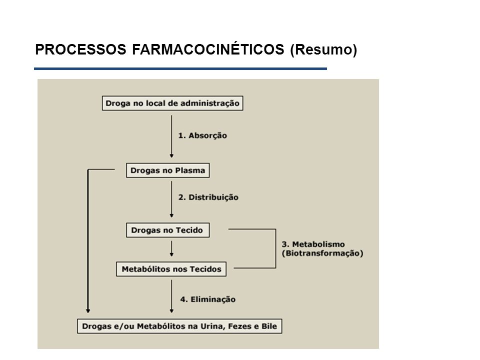 PROCESSOS FARMACOCINÉTICOS (Resumo)
