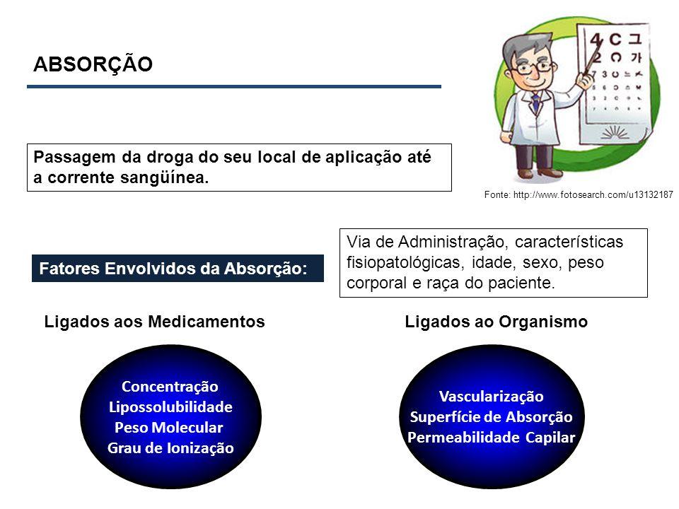 ABSORÇÃO Fonte: http://www.fotosearch.com/u13132187 Passagem da droga do seu local de aplicação até a corrente sangüínea. Fatores Envolvidos da Absorç