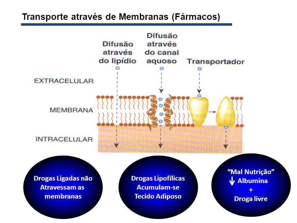 Transporte através de Membranas (Fármacos) Drogas Ligadas não Atravessam as membranas Drogas Lipofílicas Acumulam-se Tecido Adiposo Mal Nutrição Album