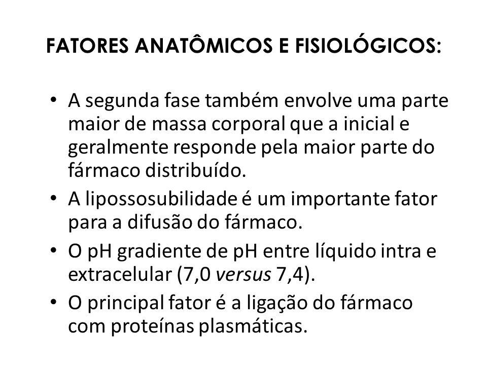 FATORES ANATÔMICOS E FISIOLÓGICOS: A segunda fase também envolve uma parte maior de massa corporal que a inicial e geralmente responde pela maior part