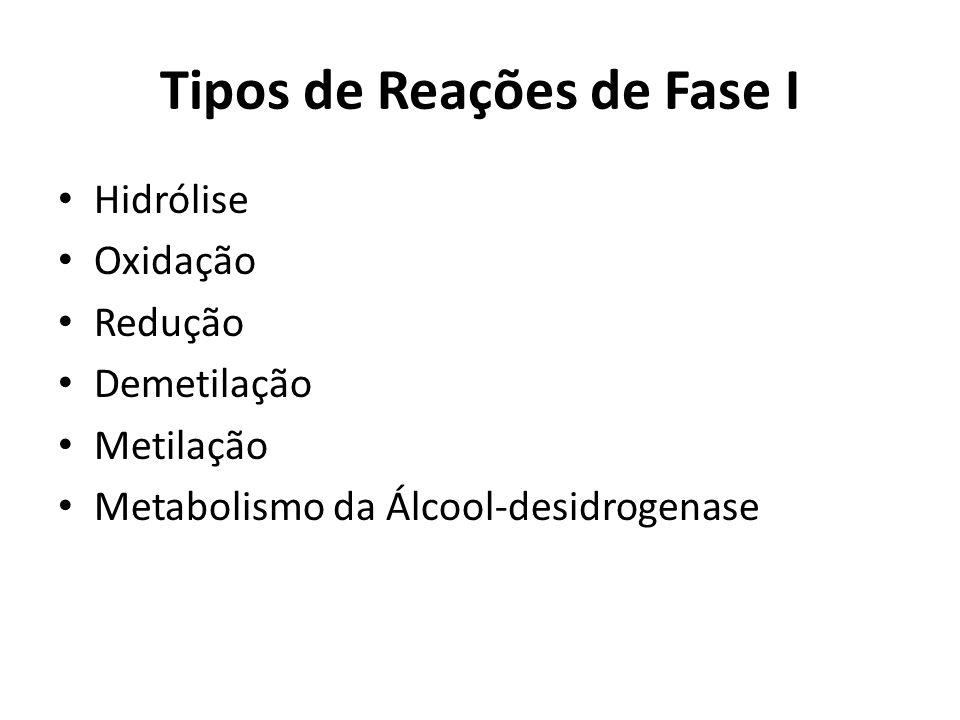 Tipos de Reações de Fase I Hidrólise Oxidação Redução Demetilação Metilação Metabolismo da Álcool-desidrogenase