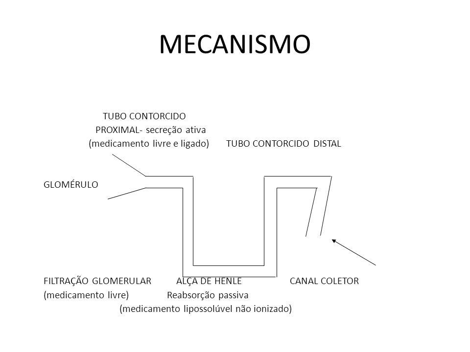 MECANISMO TUBO CONTORCIDO PROXIMAL- secreção ativa (medicamento livre e ligado) TUBO CONTORCIDO DISTAL GLOMÉRULO FILTRAÇÃO GLOMERULAR ALÇA DE HENLE CA