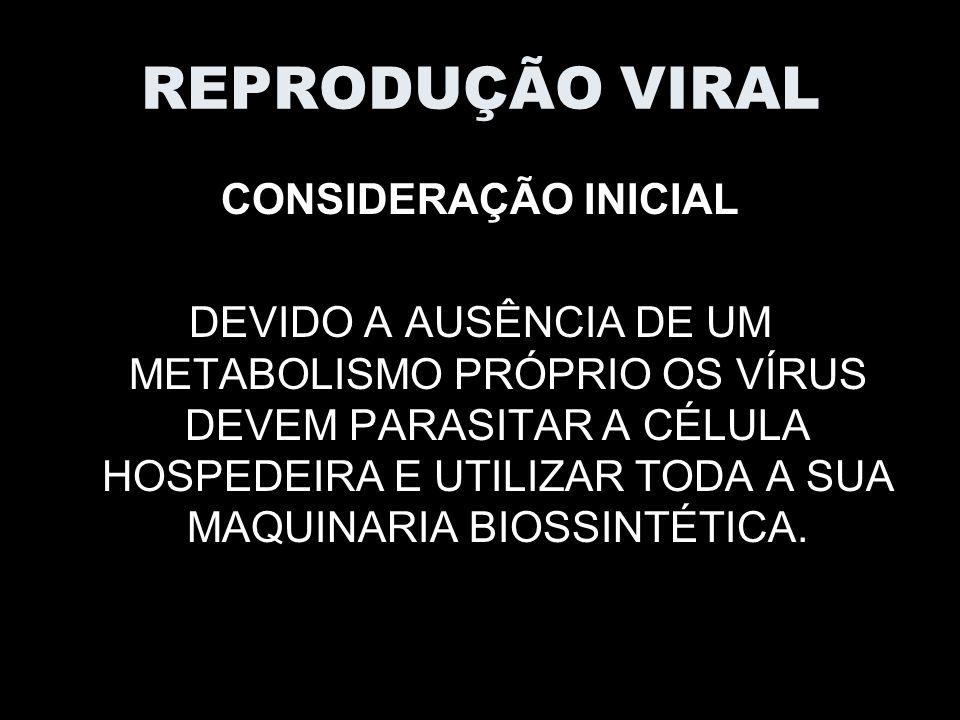 REPRODUÇÃO VIRAL CONSIDERAÇÃO INICIAL DEVIDO A AUSÊNCIA DE UM METABOLISMO PRÓPRIO OS VÍRUS DEVEM PARASITAR A CÉLULA HOSPEDEIRA E UTILIZAR TODA A SUA MAQUINARIA BIOSSINTÉTICA.