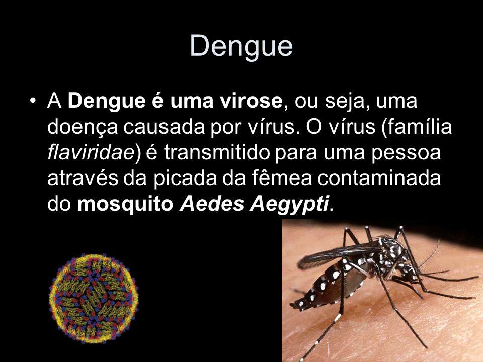 Dengue A Dengue é uma virose, ou seja, uma doença causada por vírus.