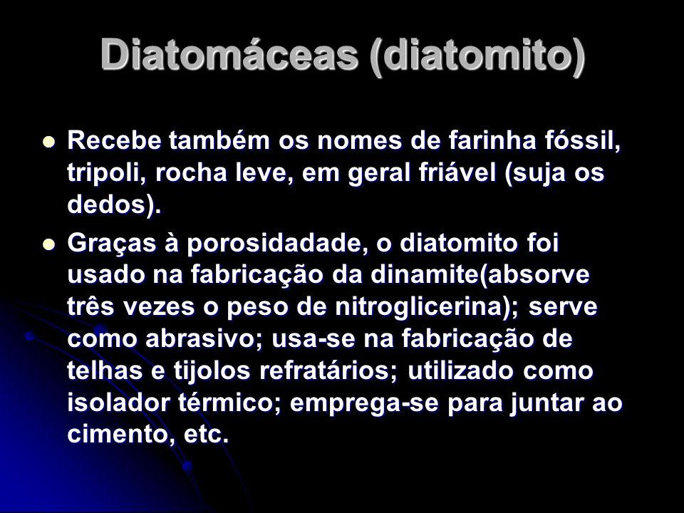 Diatomáceas (diatomito) Recebe também os nomes de farinha fóssil, tripoli, rocha leve, em geral friável (suja os dedos). Recebe também os nomes de far