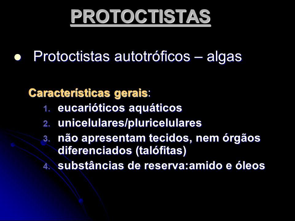 PROTOCTISTAS Protoctistas autotróficos – algas Protoctistas autotróficos – algas Características gerais: 1. eucarióticos aquáticos 2. unicelulares/plu