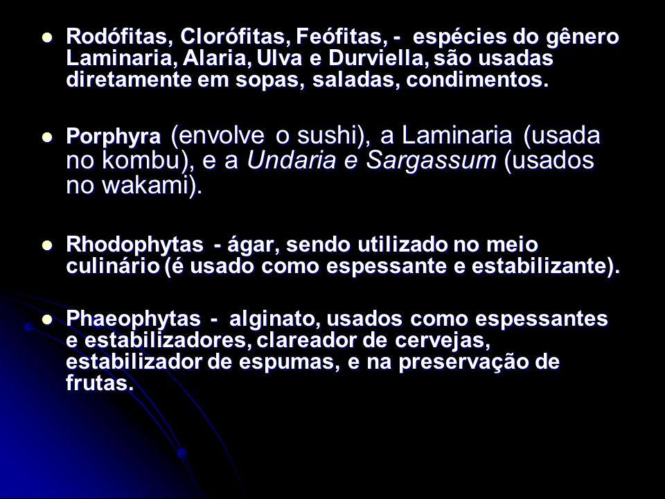 Rodófitas, Clorófitas, Feófitas, - espécies do gênero Laminaria, Alaria, Ulva e Durviella, são usadas diretamente em sopas, saladas, condimentos. Rodó