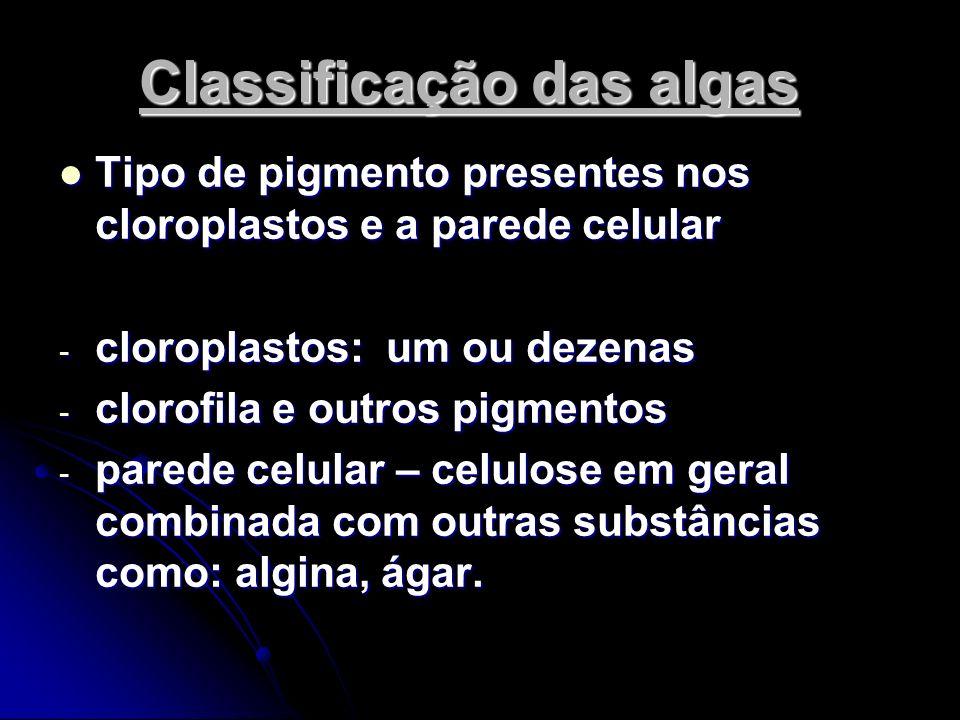 Classificação das algas Tipo de pigmento presentes nos cloroplastos e a parede celular Tipo de pigmento presentes nos cloroplastos e a parede celular