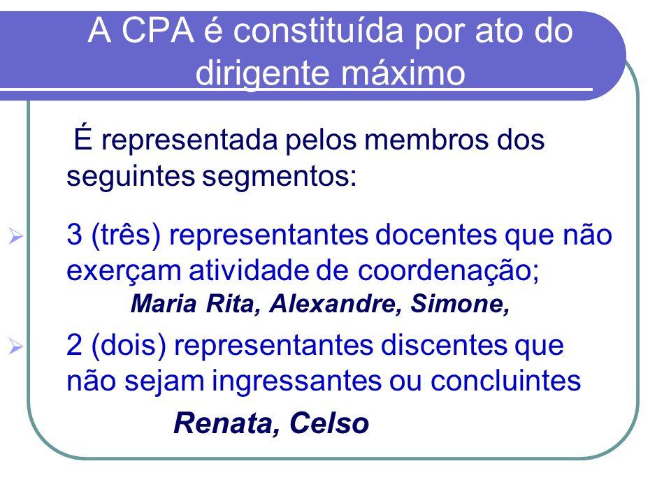 A CPA é constituída por ato do dirigente máximo É representada pelos membros dos seguintes segmentos: 3 (três) representantes docentes que não exerçam