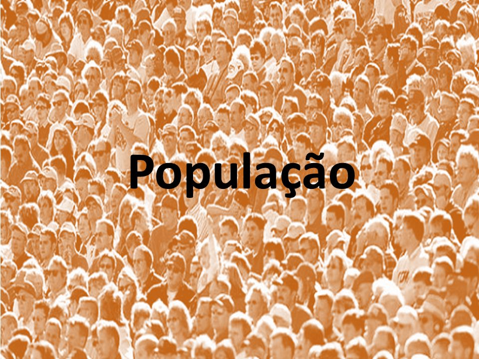 POPULAÇÃO ATIVA E SETORES DA ATIVIDADE ECONÔMICA Setor primário: compreende a pecuária, agricultura e o extrativismo (primitivo).