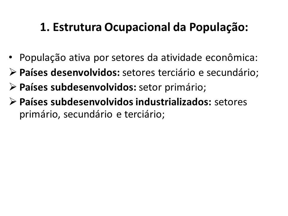 1. Estrutura Ocupacional da População: Subemprego: emprego de baixa remuneração em atividades não regulamentadas que constituem a economia informal. O