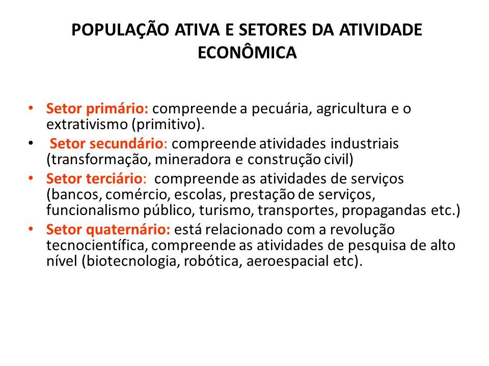 ESTRUTURA OCUPACIONAL População Economicamente Ativa (PEA): é constituída pelas pessoas de 10 ou mais anos de idade que estão empregadas ou desemprega