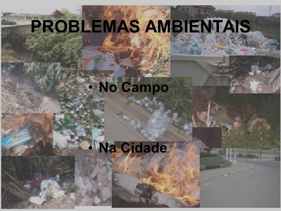 PROBLEMAS AMBIENTAIS No Campo Na Cidade