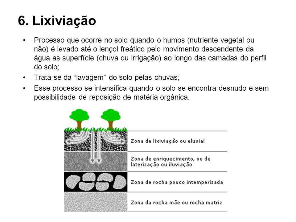 6. Lixiviação Processo que ocorre no solo quando o humos (nutriente vegetal ou não) é levado até o lençol freático pelo movimento descendente da água