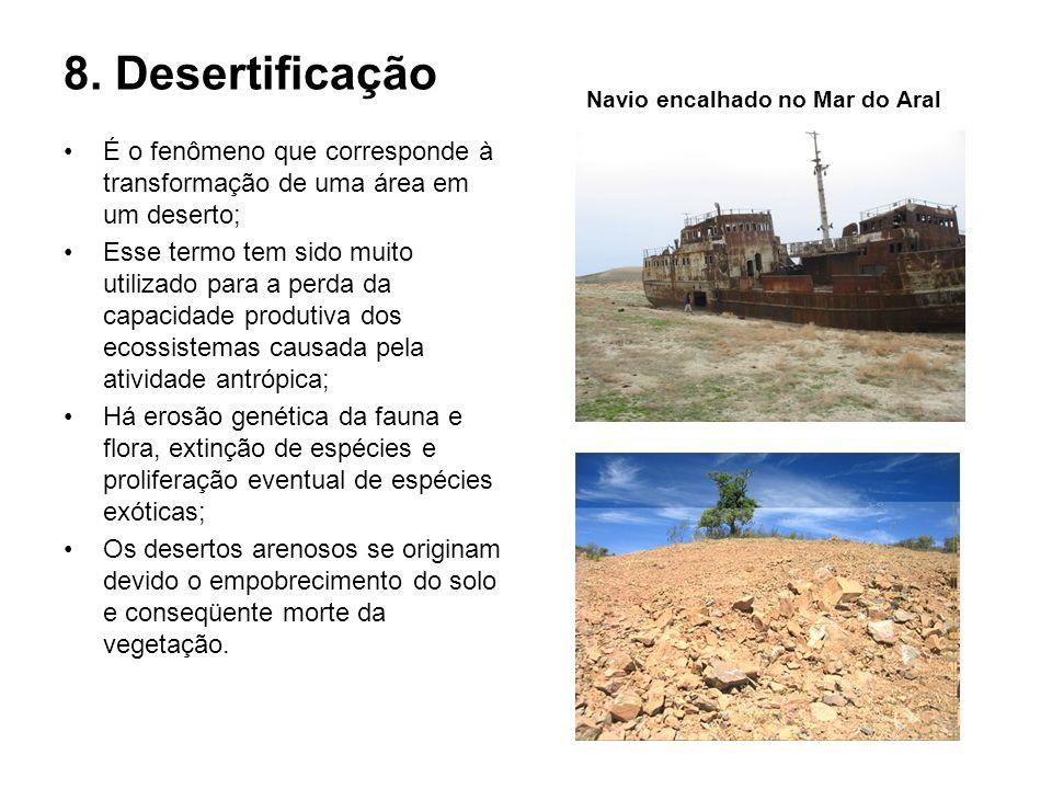 8. Desertificação É o fenômeno que corresponde à transformação de uma área em um deserto; Esse termo tem sido muito utilizado para a perda da capacida