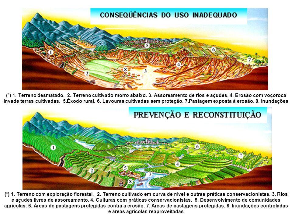 (*) 1. Terreno desmatado. 2. Terreno cultivado morro abaixo. 3. Assoreamento de rios e açudes. 4. Erosão com voçoroca invade terras cultivadas. 5.Êxod