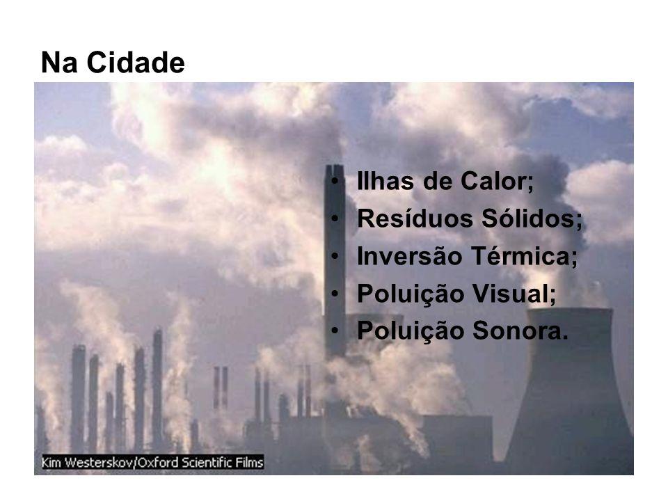 Na Cidade Ilhas de Calor; Resíduos Sólidos; Inversão Térmica; Poluição Visual; Poluição Sonora.