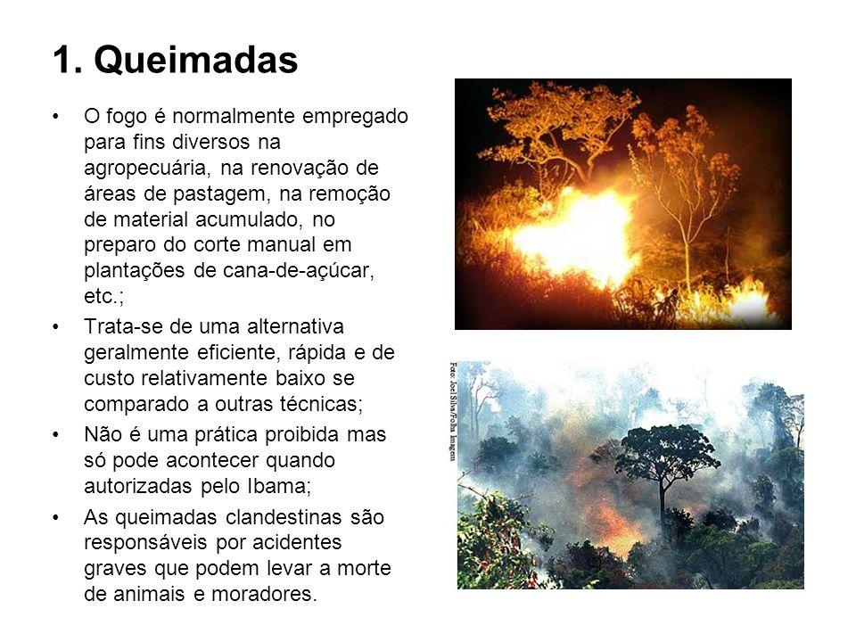 1. Queimadas O fogo é normalmente empregado para fins diversos na agropecuária, na renovação de áreas de pastagem, na remoção de material acumulado, n