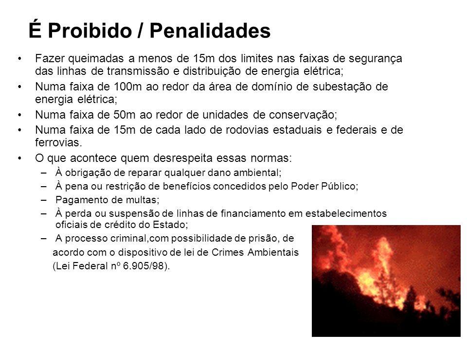 É Proibido / Penalidades Fazer queimadas a menos de 15m dos limites nas faixas de segurança das linhas de transmissão e distribuição de energia elétri
