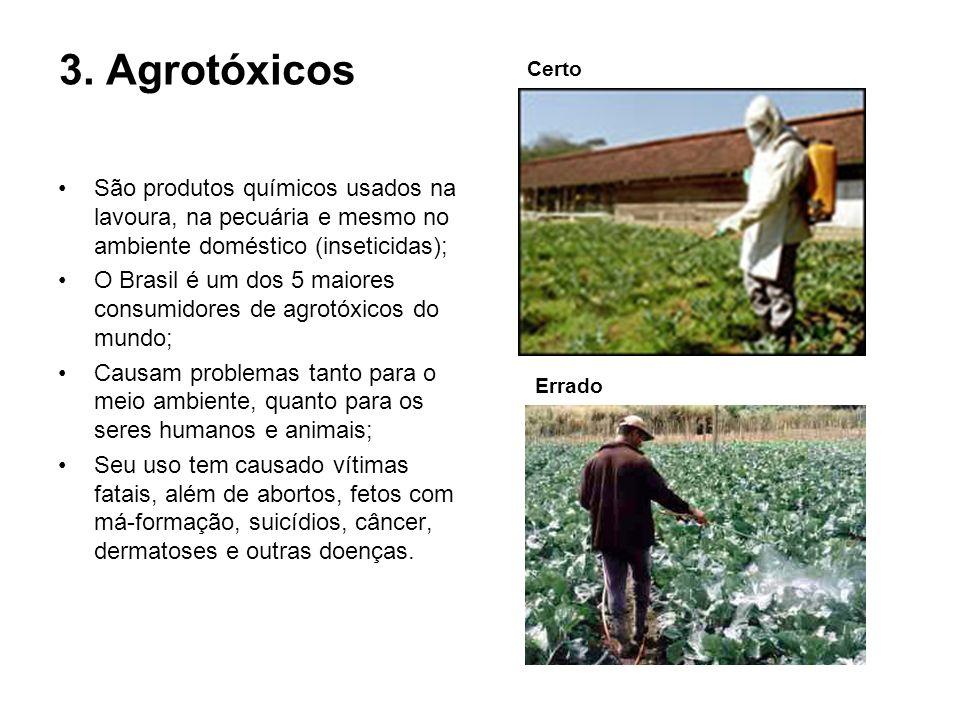 3. Agrotóxicos São produtos químicos usados na lavoura, na pecuária e mesmo no ambiente doméstico (inseticidas); O Brasil é um dos 5 maiores consumido