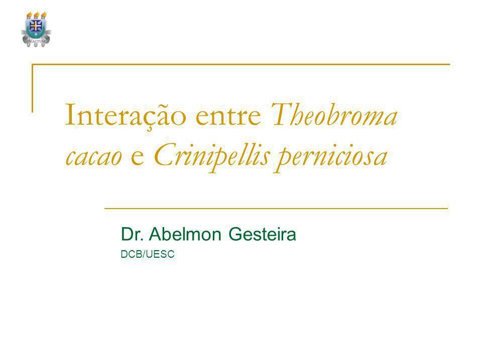 Interação entre Theobroma cacao e Crinipellis perniciosa Dr. Abelmon Gesteira DCB/UESC