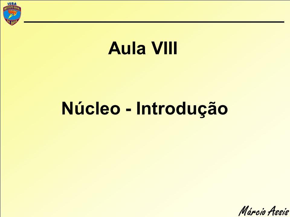 Márcio Assis Função do núcleo Responsável pelo controle das atividades da célula.