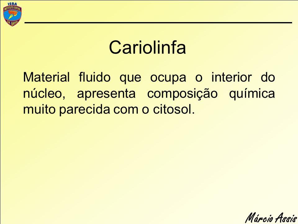Márcio Assis Cariolinfa Material fluido que ocupa o interior do núcleo, apresenta composição química muito parecida com o citosol.