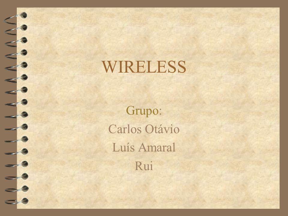 WIRELESS Grupo: Carlos Otávio Luís Amaral Rui