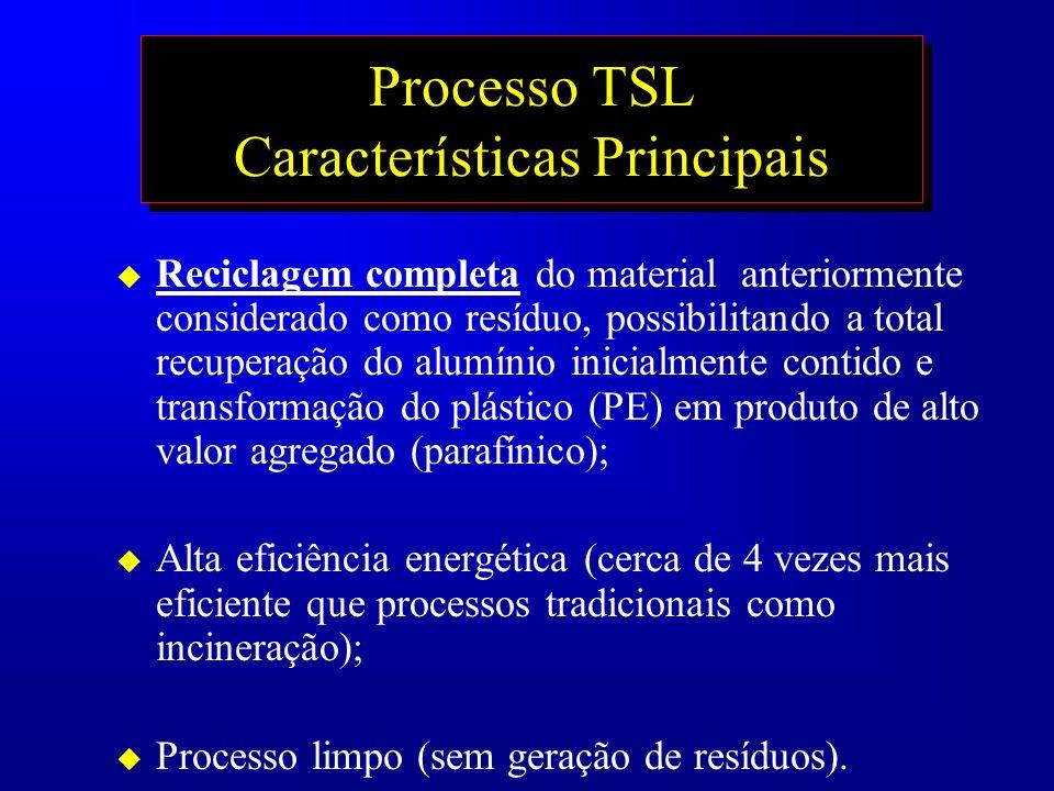 Processo TSL Características Principais u Reciclagem completa do material anteriormente considerado como resíduo, possibilitando a total recuperação d