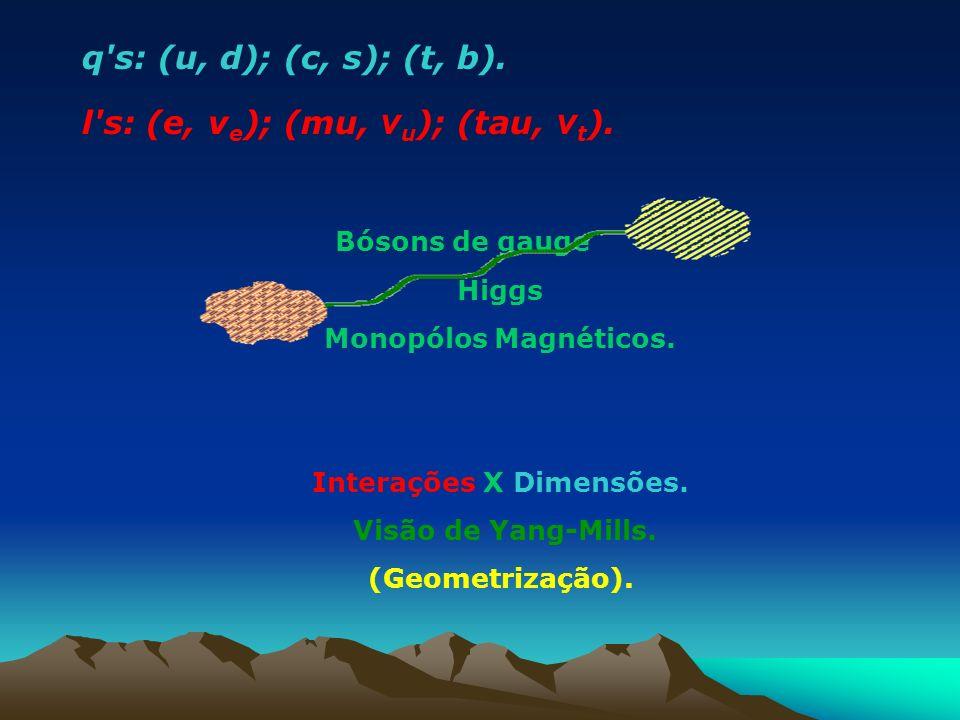 q's: (u, d); (c, s); (t, b). l's: (e, v e ); (mu, v u ); (tau, v t ). Bósons de gauge Higgs Monopólos Magnéticos. Interações X Dimensões. Visão de Yan