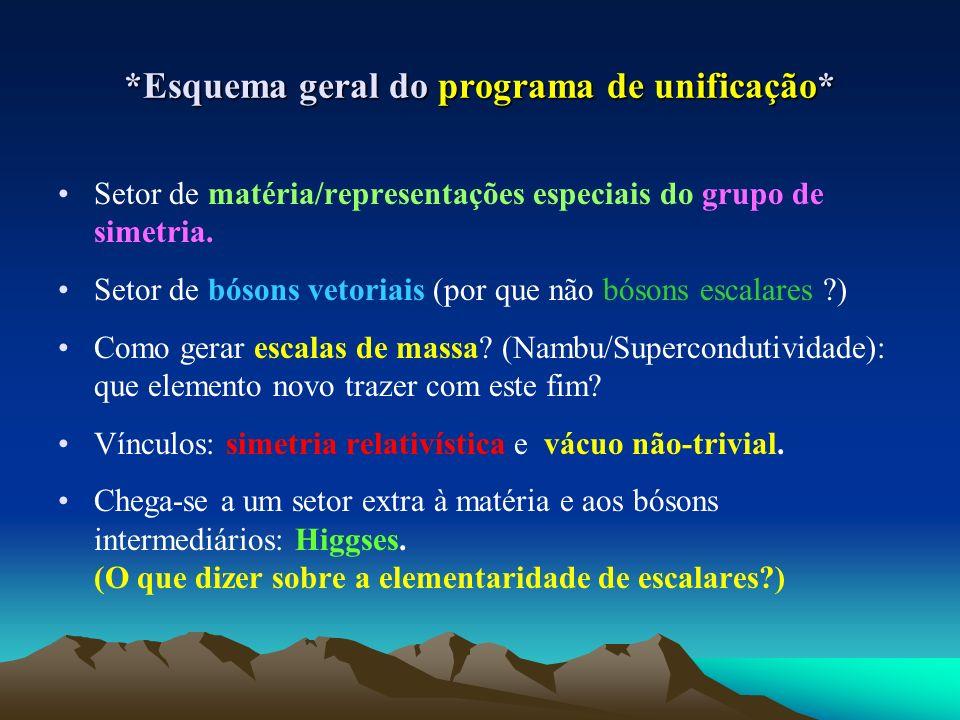 *Esquema geral do programa de unificação* Setor de matéria/representações especiais do grupo de simetria. Setor de bósons vetoriais (por que não bóson