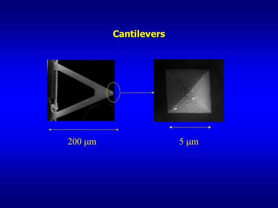 200 m 5 m Cantilevers