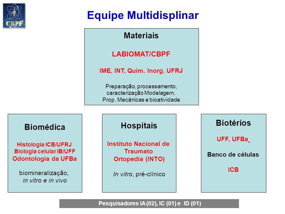 Recursos: Desenvolvimento e Inovação (DI) (2007 90% público 10% privado) Edital Programa de Apoio a Núcleos de Excelência, Pronex, (FAPERJ/CNPq) Doenças crônico-degenerativas e traumáticas: patogênese e propostas terapêuticas Projeto Ação Transversal em Nanotecnologia MCT/FINEP; Desenvolvimento de Biocerâmicas nanoestruturadas para uso clínico como material para a regeneração de tecido ósseo Programa Pesquisa para o Sistema Único de Saúde, SUS, Ministério da Saúde, CNPq/FAPERJ Produção e Avaliação Físico-Química, Biológica e Pré-Clinica de Biocerâmicas Associadas às Células Tronco Adultas da Medula Óssea para uso clínico na Rede SUS.