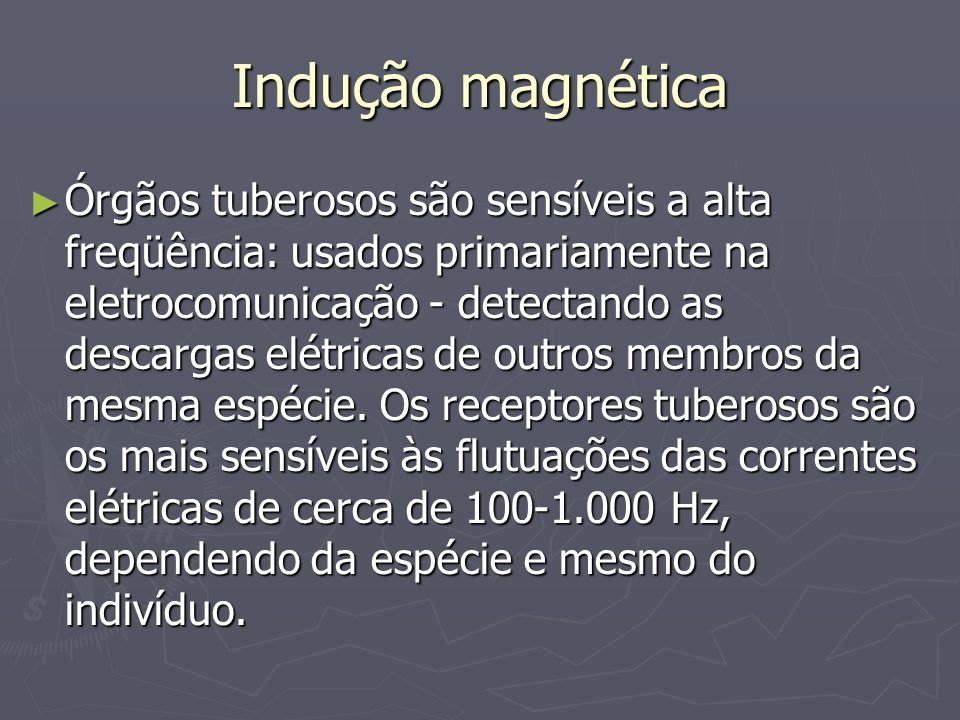 Indução magnética Órgãos tuberosos são sensíveis a alta freqüência: usados primariamente na eletrocomunicação - detectando as descargas elétricas de o