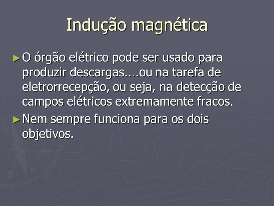Hipótese ferromagnética
