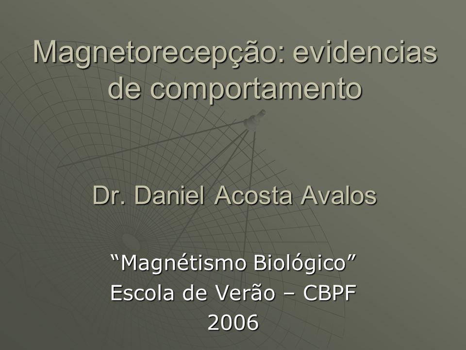 Magnetorecepção: evidencias de comportamento Dr. Daniel Acosta Avalos Magnétismo Biológico Escola de Verão – CBPF 2006