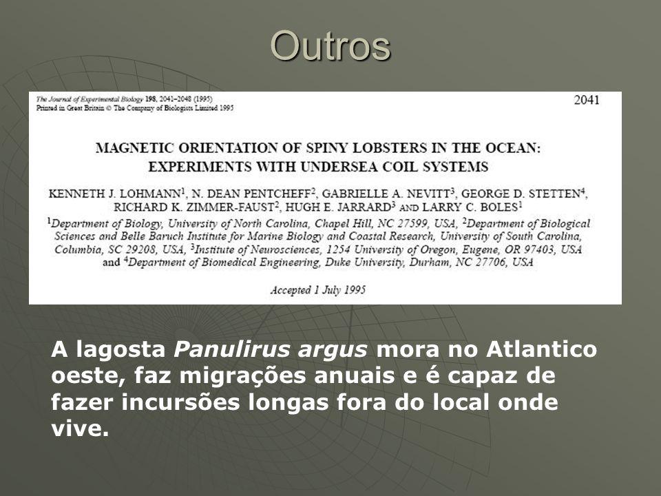 Outros A lagosta Panulirus argus mora no Atlantico oeste, faz migrações anuais e é capaz de fazer incursões longas fora do local onde vive.