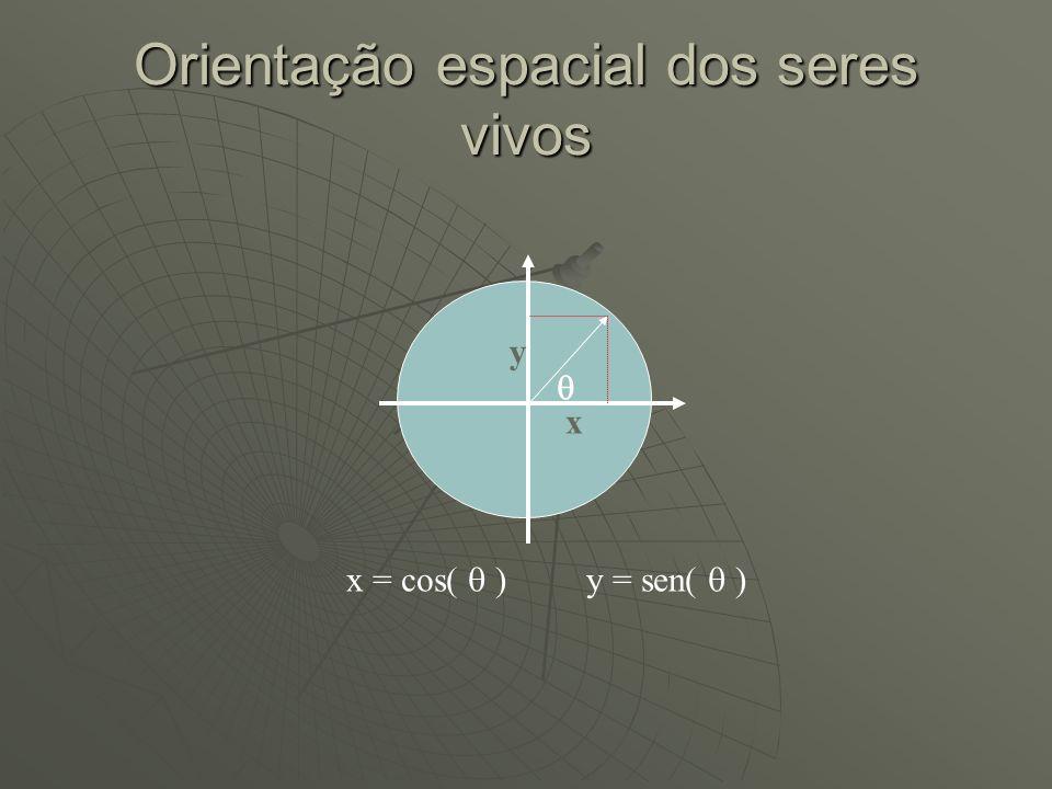 Orientação espacial dos seres vivos x y x = cos( ) y = sen( )