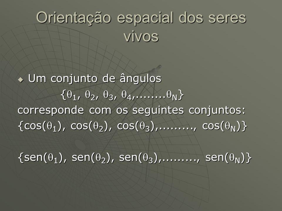 Orientação espacial dos seres vivos Um conjunto de ângulos Um conjunto de ângulos { 1, 2, 3, 4,........ N } { 1, 2, 3, 4,........ N } corresponde com