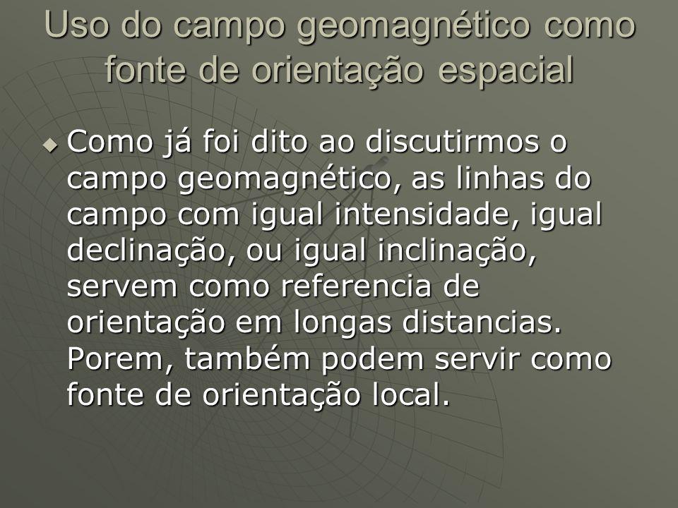 Uso do campo geomagnético como fonte de orientação espacial Como já foi dito ao discutirmos o campo geomagnético, as linhas do campo com igual intensi