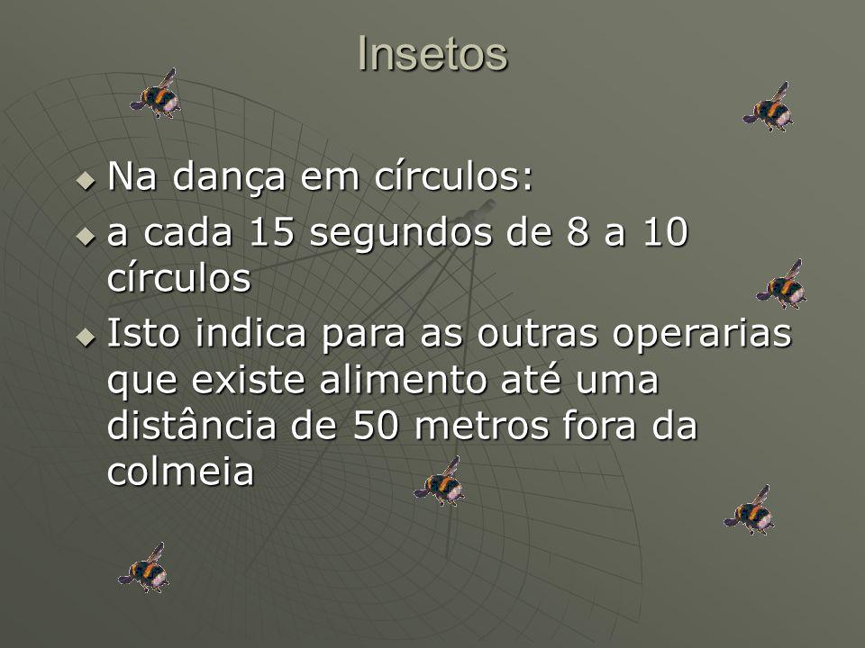 Insetos Na dança em círculos: Na dança em círculos: a cada 15 segundos de 8 a 10 círculos a cada 15 segundos de 8 a 10 círculos Isto indica para as ou