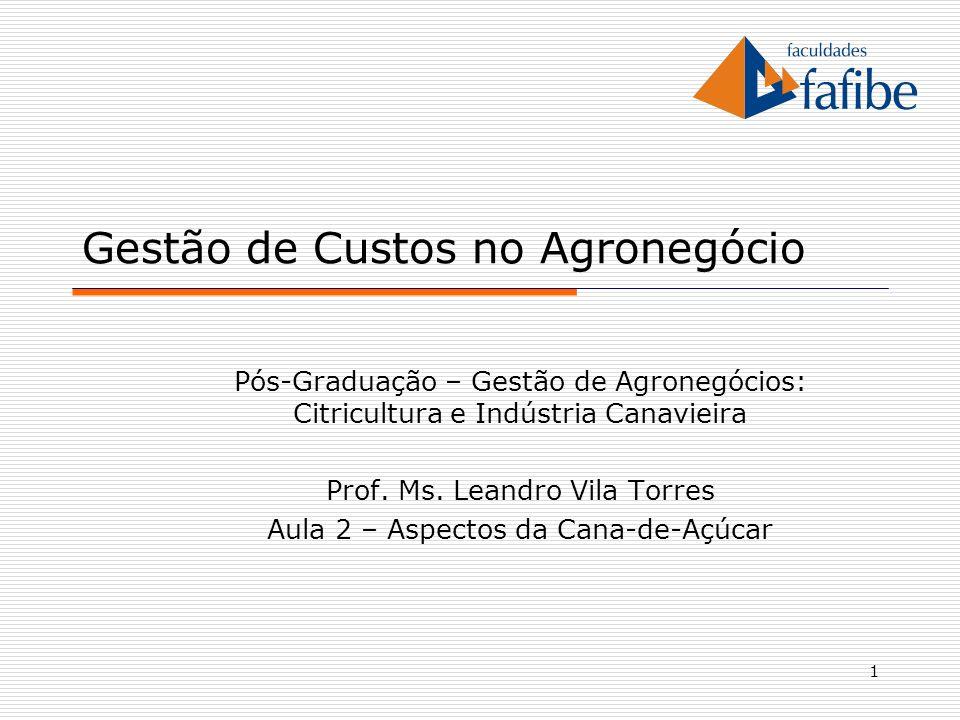 1 Gestão de Custos no Agronegócio Pós-Graduação – Gestão de Agronegócios: Citricultura e Indústria Canavieira Prof. Ms. Leandro Vila Torres Aula 2 – A