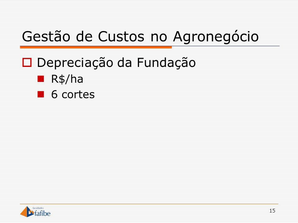 15 Gestão de Custos no Agronegócio Depreciação da Fundação R$/ha 6 cortes