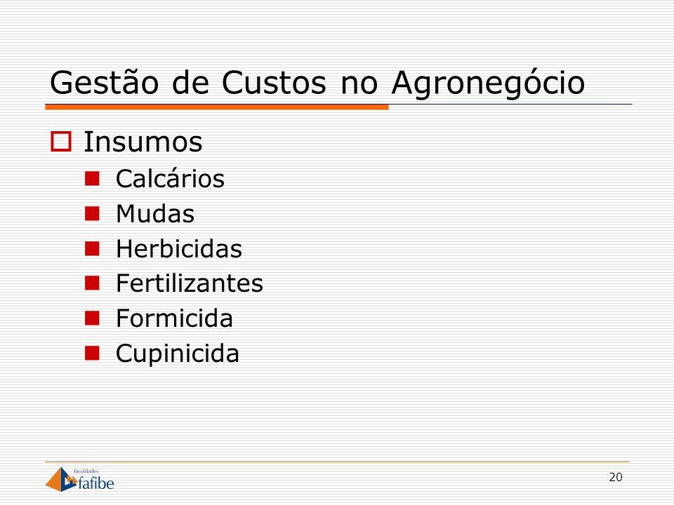 20 Gestão de Custos no Agronegócio Insumos Calcários Mudas Herbicidas Fertilizantes Formicida Cupinicida