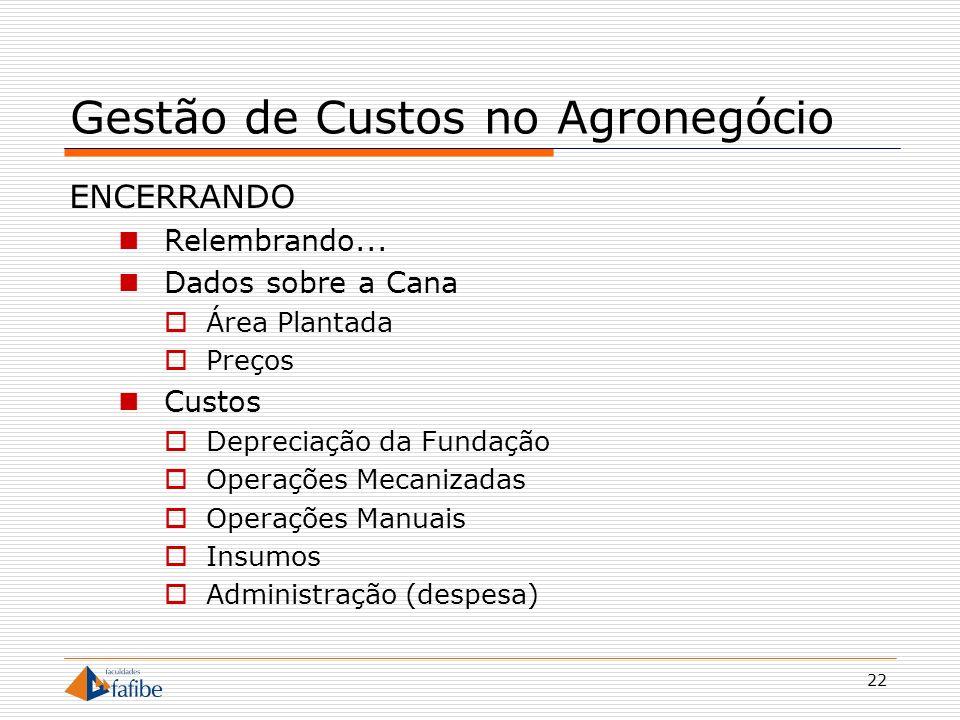 22 Gestão de Custos no Agronegócio ENCERRANDO Relembrando... Dados sobre a Cana Área Plantada Preços Custos Depreciação da Fundação Operações Mecaniza