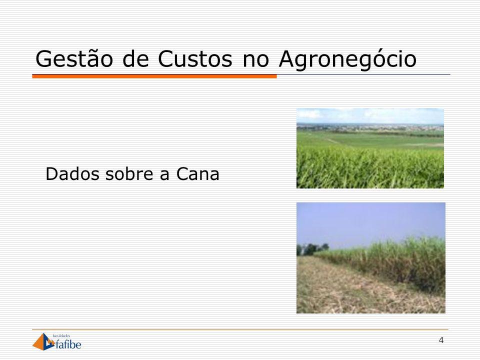 4 Gestão de Custos no Agronegócio Dados sobre a Cana